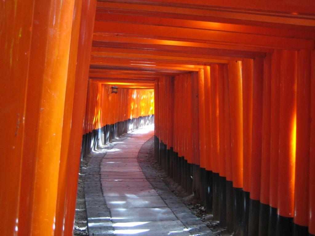 Fushimi Inari-Taisha, einer der ältesten Shinto-Schreine in Kyoto, Japan. Fotografiert von Patrizia Blaha.